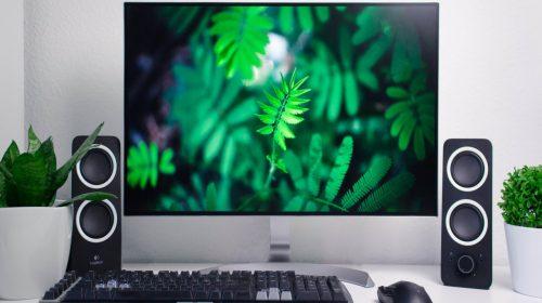 Monitory dla firm